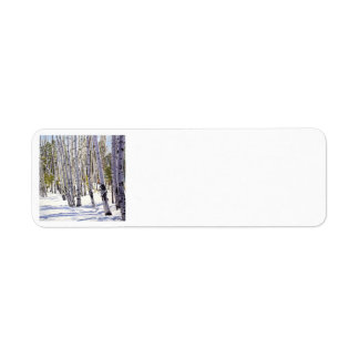 Winter Aspens Oil Painting Label