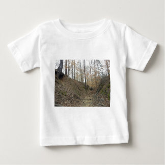 Winter at Sunken Trace Natchez Trace Parkway MS Baby T-Shirt