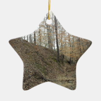 Winter at Sunken Trace Natchez Trace Parkway MS Ceramic Ornament