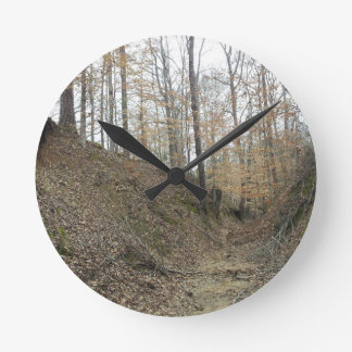 Winter at Sunken Trace Natchez Trace Parkway MS Wall Clocks