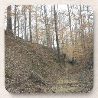 Winter at Sunken Trace Natchez Trace Parkway MS Drink Coasters