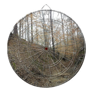 Winter at Sunken Trace Natchez Trace Parkway MS Dartboard With Darts
