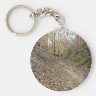 Winter at Sunken Trace Natchez Trace Parkway MS Keychain
