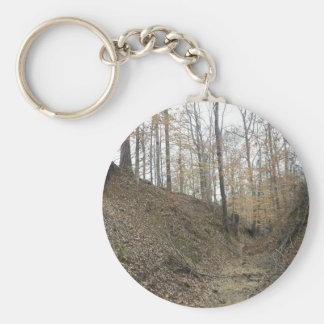 Winter at Sunken Trace Natchez Trace Parkway MS Keychains
