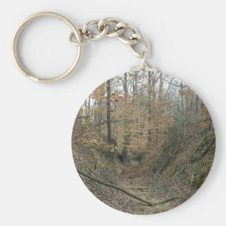 Winter at Sunken Trace Natchez Trace Parkway MS Key Chains