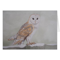 Winter Barn Owl Greetings Card