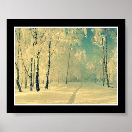 Winter Beauty Poster