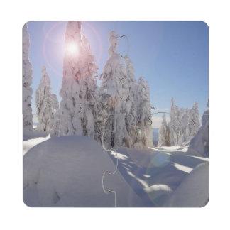 Winter Beauty Puzzle Coasters Puzzle Coaster