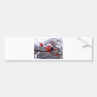Winter Berries Bumper Sticker