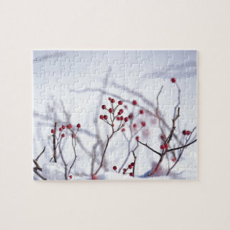 Winter Berries Jigsaw Puzzles