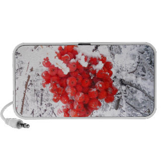 winter berries.jpg mini speaker