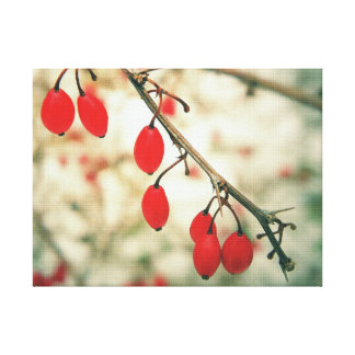 Winter Berries Stretched Canvas