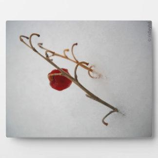 Winter Berry Photo Plaque