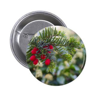 Winter Berry Pins