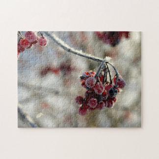Winter berry puzzle (complex)
