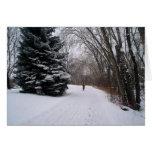 Winter bike card