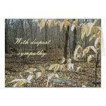 Winter Birch Sympathy Card