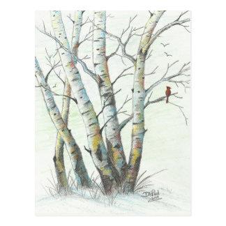 Winter Birches Colored Pencil Art Postcard