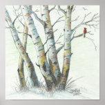 Winter Birches Colored Pencil Art Posters