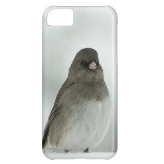 Winter Bird iPhone 5C Covers