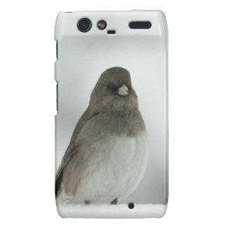 Winter Bird Droid RAZR Cover