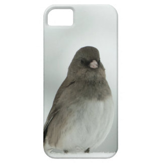 Winter Bird iPhone 5 Cover