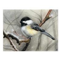 winter bird chickadee postcard