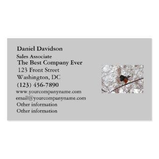 Winter Bird in the Snow Business Card