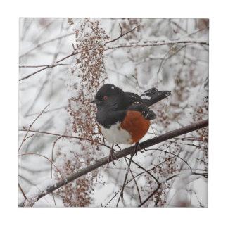 Winter Bird in the Snow Tile