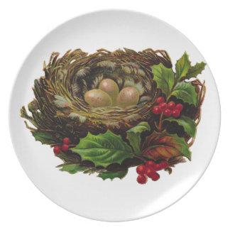 Winter Bird Nest Plate
