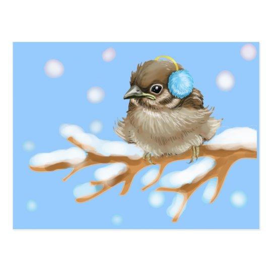 Winter Bird on snow Branch Postcard