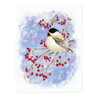 Winter Bird through Snowy Window. Christmas Scene Post Cards