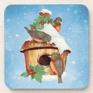Winter Birds and Birdhouse Coaster