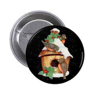 Winter Birds and Birdhouse Pinback Button