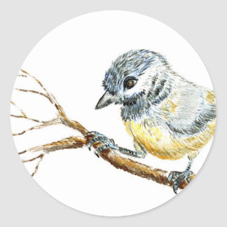 Winter Black Capped Chick-a-Dee, Watercolor Pencil Classic Round Sticker