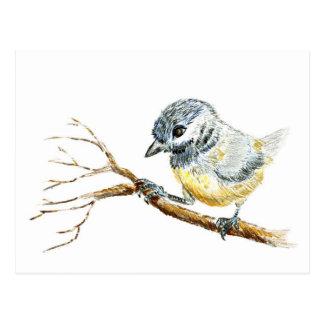 Winter Black Capped Chick-a-Dee, Watercolor Pencil Postcard