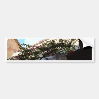 Winter Blooms In Scalea Car Bumper Sticker