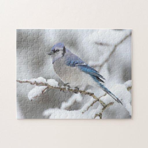 Winter Blue Jay Jigsaw Puzzle