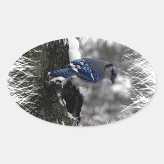 Winter Blue Jay Sticker