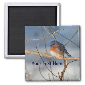 Winter Bluebird Personalized Animal Magnet