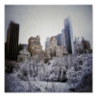 Winter Blues In Central Park Poster