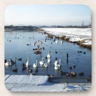 Winter boating lake scene with birds feeding. beverage coaster