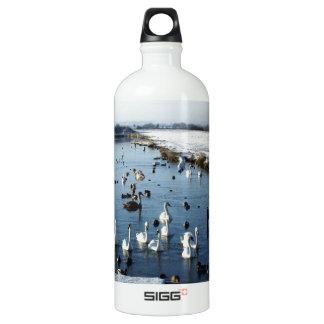 Winter boating lake scene with birds feeding. SIGG traveler 1.0L water bottle