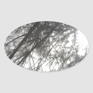 Winter Branches Oval Sticker