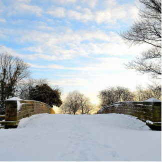 Winter Bridge Cutout