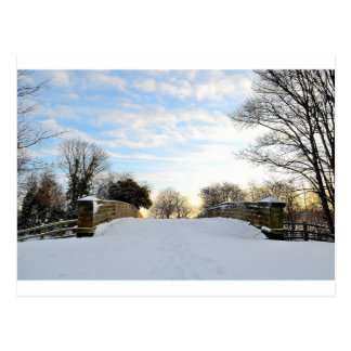 Winter Bridge Postcard