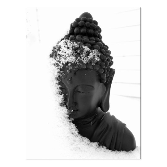 Winter Buddha Postcard