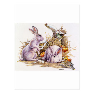 Winter Bunnies Postcard
