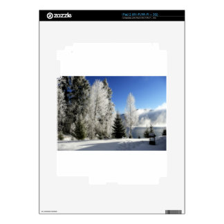 Winter by the Lake iPad 2 Decal