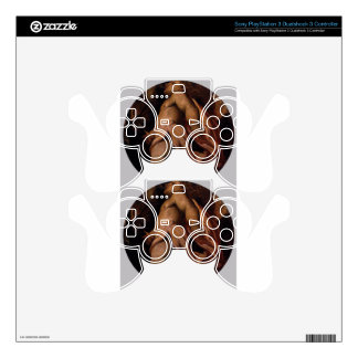 Winter by Tintoretto PS3 Controller Decals